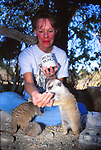 Keeper feeding meerkats at the Living Desert