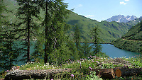 Piemonte, Val Formazza, Lago di Morasco.<br /> Piedmont, Formazza valley, Lake Morasco.