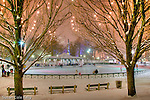 Christmas lights at the Frog Pond skating rink in Boston Common, Boston, MA
