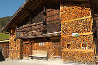 Winter logs - Grindelwald - Berenese Oberland - Switzerland
