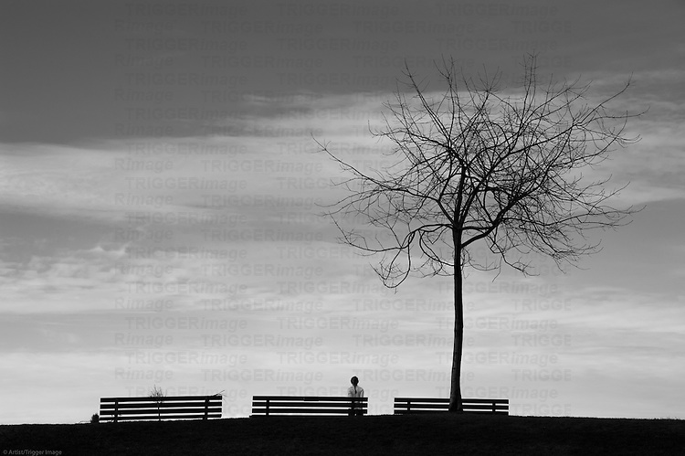 A woman standing amongst park benches, with a lone tree; looking into the open sky