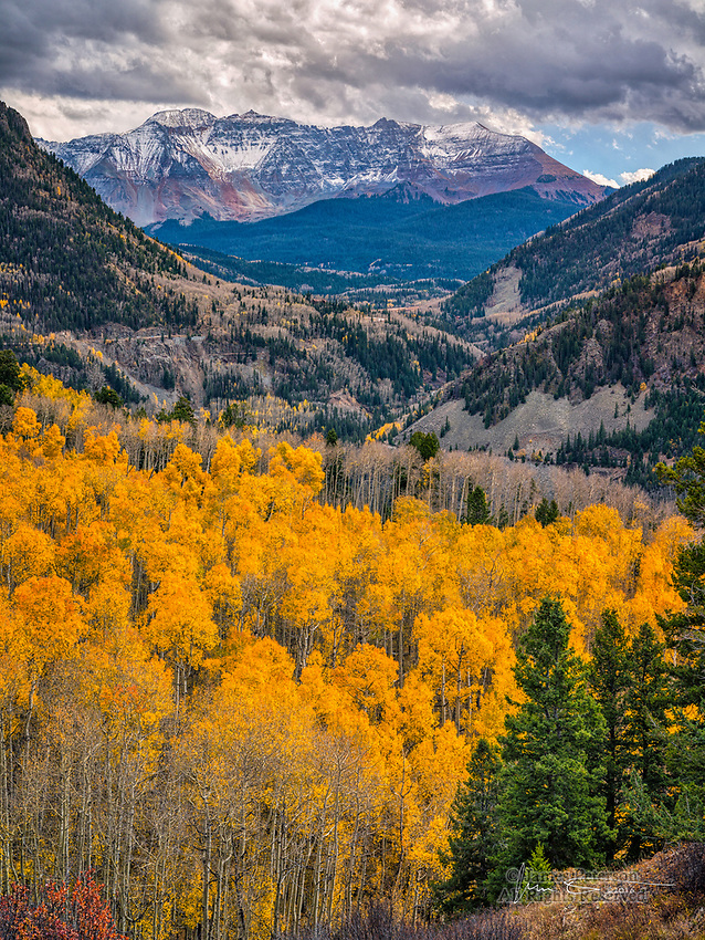Aspens near Telluride, Colorado ©2016 James D Peterson.  A classic autumn scene just off Highway 145, south of Telluride.  An early winter storm was just clearing when I captured this scene.