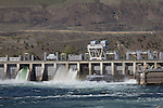 Columbia River, Rock Island Dam, Chelan County Public Utility District, Chelan County, Eastern Washington, Washington State, Pacific Northwest, United States,