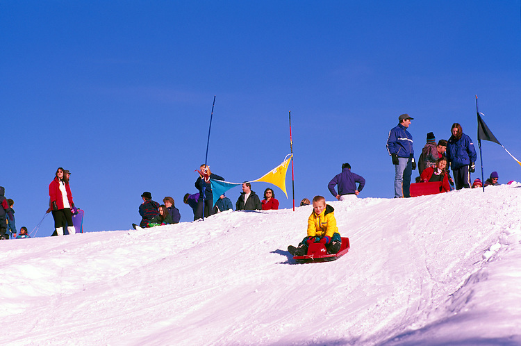 Children tobogganing down a Mountain Slope in Mount Seymour Provincial Park, in the Coast Mountains, North Vancouver, Southwestern British Columbia, Canada