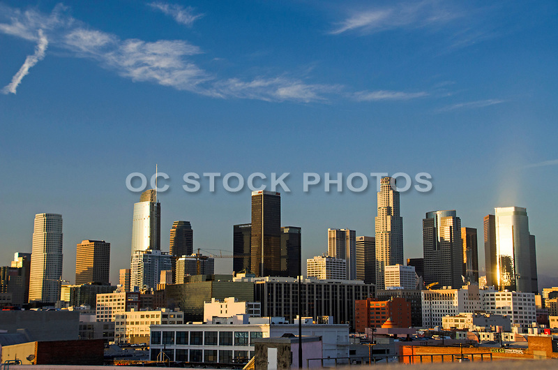 LA Skyline During the Day