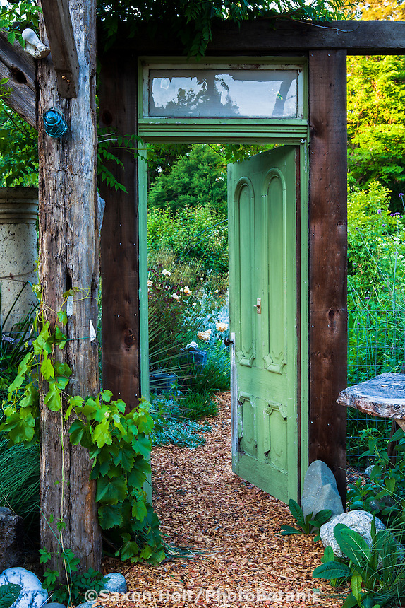 An old victorian-era door leading to the vegetable garden.  The rose 'Lady Hillington' with Stipa gigantea on the left; Kate Frey Garden