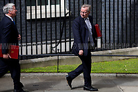 (From L to R) Sir Michael Fallon MP (Secretary of State for Defence) &amp; Michael Gove MP (Secretary of State for Environment, Food and Rural Affairs).<br /> <br /> London, 12/06/2017. Today, Theresa May's reshuffled Cabinet met at 10 Downing Street after the General Election of the 8 June 2017. Philip Hammond MP - not present in the photos - was confirmed as Chancellor of the Exchequer. <br /> After 5 years of the Coalition Government (Conservatives &amp; Liberal Democrats) led by the Conservative Party leader David Cameron, and one year of David Cameron's Government (Who resigned after the Brexit victory at the EU Referendum held in 2016), British people voted in the following way: the Conservative Party gained 318 seats (42.4% - 13,667,213 votes &ndash; 12 seats less than 2015), Labour Party 262 seats (40,0% - 12,874,985 votes &ndash; 30 seats more then 2015); Scottish National Party, SNP 35 seats (3,0% - 977,569 votes &ndash; 21 seats less than 2015); Liberal Democrats 12 seats (7,4% - 2,371,772 votes &ndash; 4 seats more than 2015); Democratic Unionist Party 10 seats (0,9% - 292,316 votes &ndash; 2 seats more than 2015); Sinn Fein 7 seats (0,8% - 238,915 votes &ndash; 3 seats more than 2015); Plaid Cymru 4 seats (0,5% - 164,466 votes &ndash; 1 seat more than 2015); Green Party 1 seat (1,6% - 525,371votes &ndash; Same seat of 2015); UKIP 0 seat (1.8% - 593,852 votes); others 1 seat. <br /> The definitive turn out of the election was 68.7%, 2% higher than the 2015.<br /> <br /> For more info about the election result click here: http://bbc.in/2qVyNRd &amp; http://bit.ly/2s9ob51<br /> <br /> For more info about the Cabinet Ministers click here: https://goo.gl/wmRYRd
