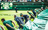 AMBIENCE<br /> <br /> TENNIS - THE CHAMPIONSHIPS - WIMBLEDON - ATP - WTA - ITF - GRAND SLAM - CHAMPIONSHIPS - LONDON - GREAT  BRITAIN - 2016  <br /> <br /> <br /> <br /> &copy; TENNIS PHOTO NETWORK