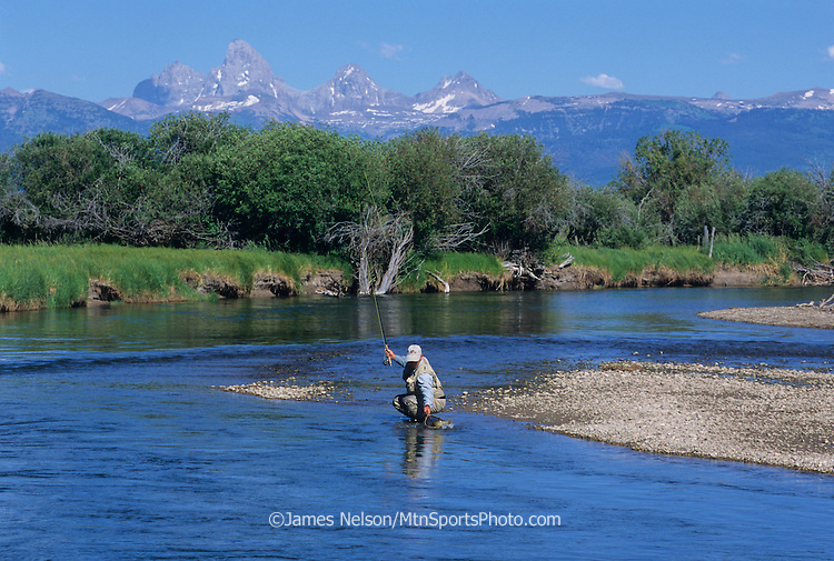08451-B. A fly fisherman nets a cutthroat trout on east Idaho's Teton River, with the Teton Range of Wyoming in the background.