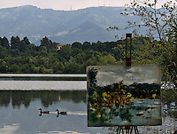 Il lago di Sartirana..Ducks on Sartirana lake, foreground a painting of the lake
