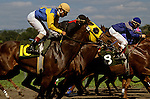Horse race with four riders neck and neck racing to the finish line
