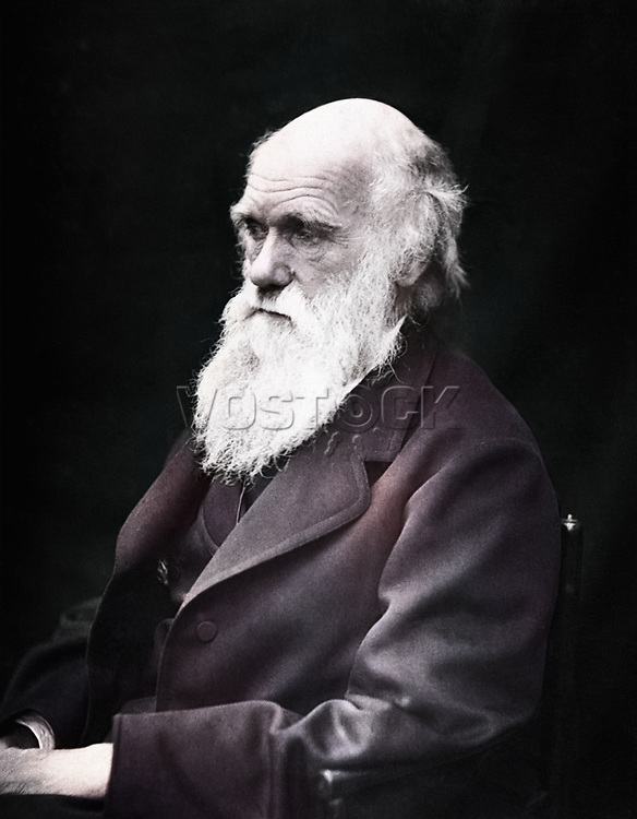 Charles Darwin (1809-1882) - naturalist and exponent of the theory of evolution, photographed 1869 .