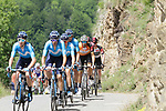 The peloton led by Movistar Team for race leader World Champion Alejandro Valverde (ESP) on the slopes of the final climb Horquette d'Ancizan during Stage 3 of the Route d'Occitanie 2019, running 173km from Arreau to Luchon-Hospice de France, France. 22nd June 2019<br /> Picture: Colin Flockton | Cyclefile<br /> All photos usage must carry mandatory copyright credit (© Cyclefile | Colin Flockton)
