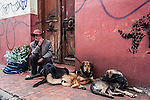 A street musician and his dogs in the Candelaria district of Bogota, Colombia.