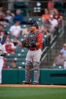 Pawtucket Red Sox catcher Juan Centeno (2) during an International League game against the Rochester Red Wings on June 28, 2019 at Frontier Field in Rochester, New York.  Pawtucket defeated Rochester 8-5.  (Mike Janes/Four Seam Images)