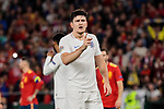 England's Harry Maguire have words with the referee during UEFA Nations League 2019 match between Spain and England at Benito Villamarin stadium in Sevilla, Spain. October 15, 2018. (ALTERPHOTOS/A. Perez Meca)