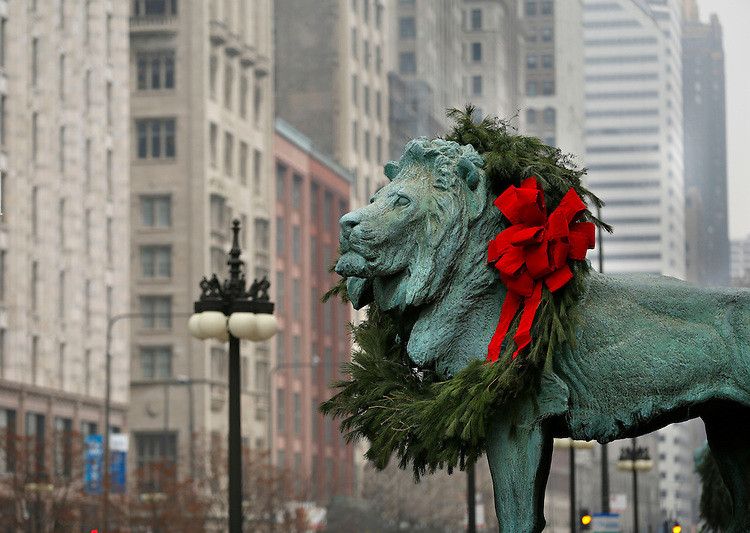 "Chicago holiday scenes:  The bronze lions outside the Art Institute of Chicago have been decorated for the holidays with evergreen wreaths. This was the 22nd year the iconic statues have gotten their holiday makeover. (Optional trim: The two bronze lions that flank the Michigan Avenue entrance were made for the Art Institute's opening at its current location on Michigan Ave in 1893 and were a gift from Mrs. Henry Field. The statues have unofficial ""names,"" given to them by their sculptor, Edward Kemeys, that are more like designations. The south lion ""stands in an attitude of defiance,"" while the north lion is ""on the prowl."")  (Photo by Jamie Moncrief)"
