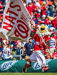 22 June 2014: Washington Nationals Mascot Screech waves a flag in victory over the visiting Atlanta Braves at Nationals Park in Washington, DC. The Nationals defeated the Braves 4-1 to split their 4-game series and take sole possession of first place in the NL East. Mandatory Credit: Ed Wolfstein Photo *** RAW (NEF) Image File Available ***