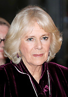 06 February 2019 - Camilla Duchess of Cornwall attends a reception to launch the Glorious Grandparents initiative at Unicorn Theatre in London. Photo Credit: ALPR/AdMedia