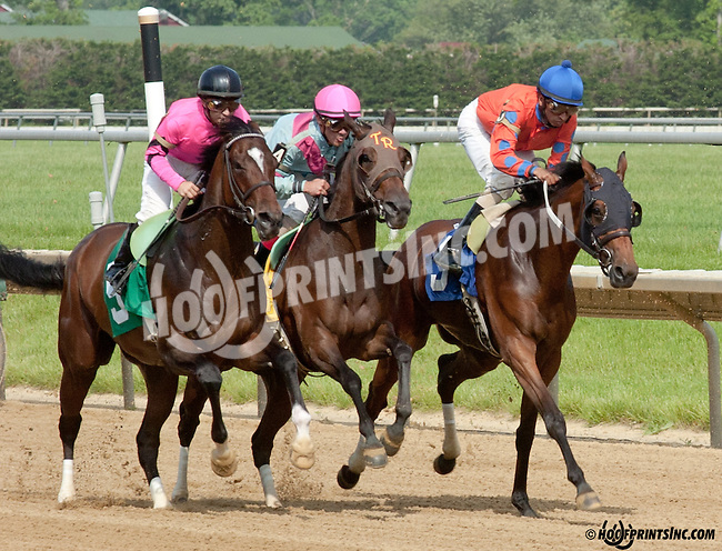 Makayla's Angel winning Delaware Park on 5/22/13