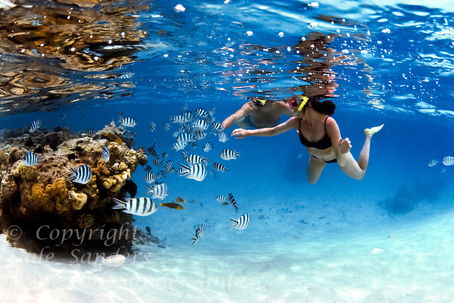 A young couple snorkel with tropical fish, underwater on a coral reef in Aitutaki Lagoon, Cook Islands, in the Sout Pacific. Model Released