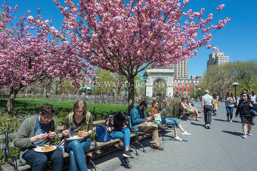 New York, USA, People having lunch and reading on a warm Spring afternoon in Washington Suquare