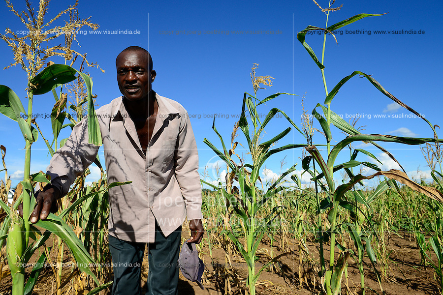 Zambia Chiawa, farmer in maize field which are attacked often by wild animals from the Lower Zambezi National Park / SAMBIA Chiawa, Doerfer im Game Reserve Area des Lower Zambezi Nationalpark, die Dorfbewohner und ihre Felder werden staendig von Wildtieren wie Elefanten, Nilpferden etc attackiert, Farmer im Maisfeld