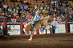 Lathan Lyons on 631 Copper Canyon of SY of during first round of the Fort Worth Stockyards Pro Rodeo event in Fort Worth, TX - 8.2.2019 Photo by Christopher Thompson