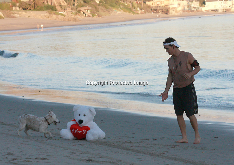 .2-1-09  Sunday Exclusive.Matthew McConaughey jogging on the beach with his dog in MALIBU California .Matthew played fetch with his dog & it looked like he also got an early Valentine bear for Camila ..www.AbilityFilms.com.805-427-3519.AbilityFilms@yahoo.com
