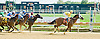 Franks A Coming winning at Delaware Park on 9/20/12