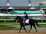 April 28, 2019 : Serengeti Empress works out at Churchill Downs, Louisville, Kentucky, preparing for a start in the Kentucky Oaks. Owner Joel Politi, trainer Thomas M. Amoss. By Alternation x Havisham (Bernardini)  Mary M. Meek/ESW/CSM