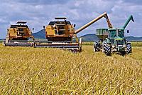 Colheita mecanizada de arroz irrigado em Pacaraima, Reserva Indígena Raposa do Sol. Roraima. 2004.  Foto de Alf Ribeiro.