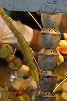 China, Peking (Beijing), Dong'anmen-Nachtmarkt, kandierte Früchte