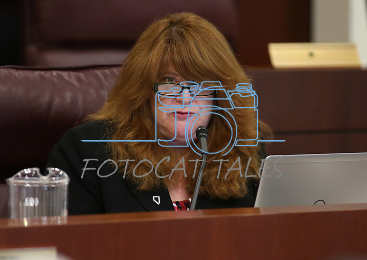 Nevada Assemblywoman Ellen Spiegel, D-Henderson, works in committee at the Legislative Building in Carson City, Nev., on Wednesday, April 29, 2015. <br /> Photo by Cathleen Allison