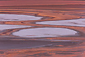 Bolivia, Altiplano, Laguna Colorada; the salt lake contains borax islands, whose white color contrasts with the reddish color of its waters, which is caused by red sediments and pigmentation of some algae.