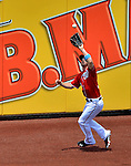 17 June 2012: Washington Nationals outfielder Bryce Harper pulls in a fly ball on the warning track during a game against the New York Yankees at Nationals Park in Washington, DC. The Yankees defeated the Nationals 4-1 to sweep their 3-game series. Mandatory Credit: Ed Wolfstein Photo