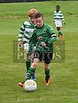 Albion Green Cormac Donnelly Termonfeckin Greek Garvan O'Reilly. Photo:Colin Bell/pressphotos.ie