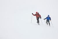 Back country skiing on the ruth glacier in a snowstorm, Alaska Range mountains, Interior, Alaska.