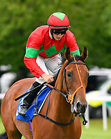 Quick ridden by Tom Marquand goes down to the start of The Wilton Homes Novice Stakes during Evening Racing at Salisbury Racecourse on 11th June 2019