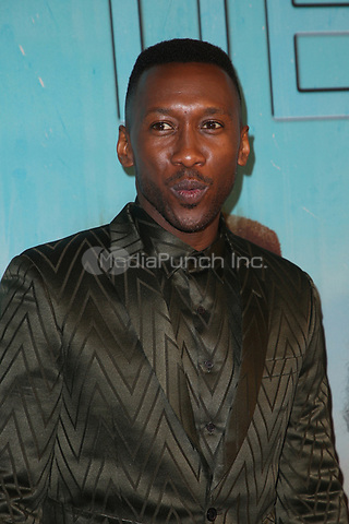 LOS ANGELES, CA - JANUARY 10: Mahershala Ali at the Los Angeles Premiere of HBO's True Detective Season 3 at the Directors Guild Of America in Los Angeles, California on January 10, 2019. Credit: Faye Sadou/MediaPunch