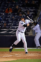 Tampa Yankees designated hitter Matt Snyder (29) at bat during a game against the Lakeland Flying Tigers on April 7, 2017 at George M. Steinbrenner Field in Tampa, Florida.  Lakeland defeated Tampa 5-0.  (Mike Janes/Four Seam Images)
