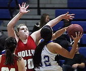 Holly at Lakeland, Girls Varsity Basketball, 12/4/15