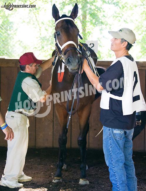 Sean Jones saddling Prince Vincenzo at Delaware Park on 9/23/15