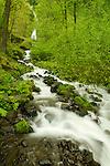 Wahkeena Falls. Oregon.