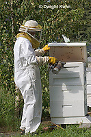 1B15-500z  Caring for Honeybee Hive
