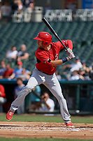 Springfield Cardinals Dylan Carlson (8) bats during a Texas League game against the Frisco RoughRiders on May 5, 2019 at Dr Pepper Ballpark in Frisco, Texas.  (Mike Augustin/Four Seam Images)