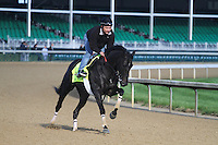 May 1, 2014: Dance with Fate gallops in preparation for the Kentucky Derby at Churchill Downs in Louisville, KY. Zoe Metz/ESW/CSM