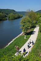 DEU, Deutschland, Bayern, Niederbayern, Naturpark Altmuehltal, bei Essing: Radwanderweg entlang der Altmuehl (Main-Donau-Kanal) | DEU, Germany, Bavaria, Lower Bavaria, Natural Park Altmuehltal, near Essing: cycle path along river Altmuehl (Main-Danube-Canal)