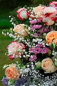 Carl, FLOWERS, photos, SWLA12011,#f# Blumen, Natur, flores, naturaleza