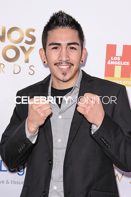 LOS ANGELES, CA - OCTOBER 12: 2013 Latinos de Hoy Awards held at Los Angeles Times' Chandler Auditorium on October 12, 2013 in Los Angeles, California. (Photo by Rob Latour/Celebrity Monitor)